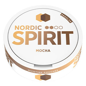 Snusnetto Nordic Spirit Mocha Slim Regular