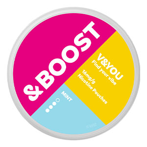 Snusnetto V&YOU &BOOST Mint